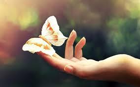 """Εκπαιδευτικό Σεμινάριο Μασάζ """"Άγγιγμα της Πεταλούδας"""" της Εύας Ράιχ @ Holistic Health"""